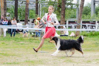 Девушка и пес: история одного предательства