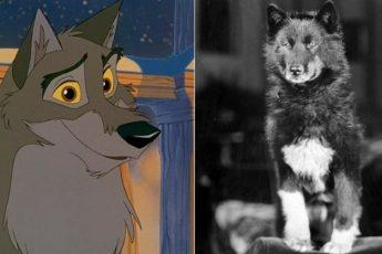 Реальная история Балто — ездового пса, спасшего город от эпидемии в начале ХХ века