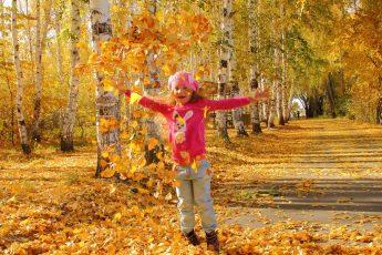 Листья и осень