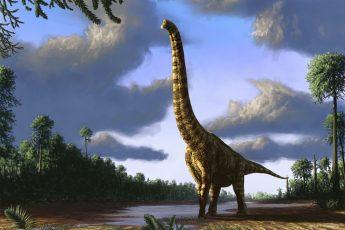 Гигантский динозавр: причина больших размеров