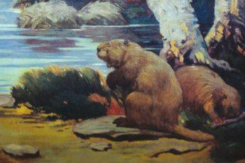 Гигантский вымерший бобер размером с медведя